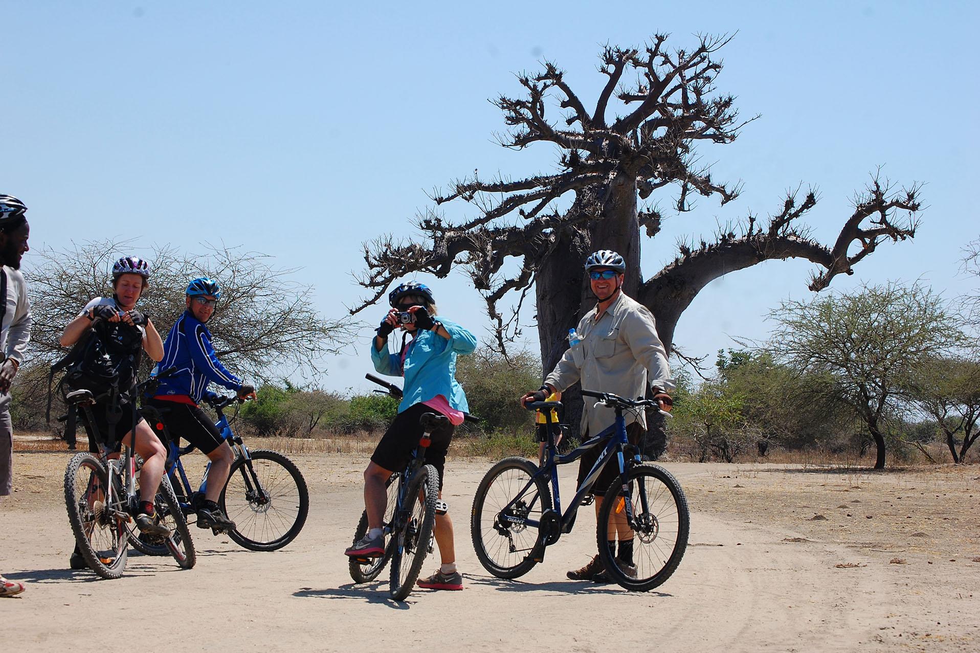 1 Day Biking Tour in Moshi